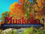 Muskoka: Once Discovered, Never Forgotten!