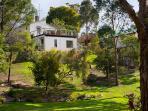 Monigatti - Backyard