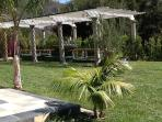 Cabana , total large area 45'x70' , all grassy area with Palm and olive trees next to long gls table