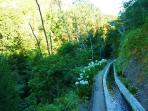 Walking in nature (Levada) 2