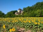 The Chateau de Belcayre in summer from the sunflower field alongside the river