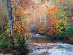 Gatlinburg River