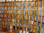 Access to our extensive DVD library (main house)