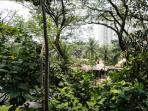 Well kept rich natural foliage in a highly secured 15 acre compound within city ctr