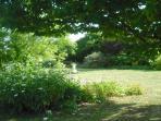 Mature garden borders