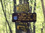 Lot's of hiking trails