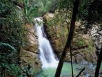 Just one of over 20 magnificent waterfalls in Puerto Rico