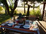 Birthday supper on the deck
