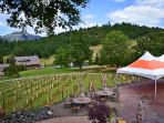 Reustle's Winery -- only a quarter-mile away!