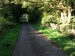 Hamlet of Brandlingill  - Country Lane to Wood Farm