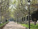 Sant Feliu itself is a prosperous town with, light, space, activities but not too much stress