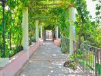 Il pergolato tra l'ingresso, il giardino e la villa