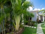 Carefully landscaped gardens in the villa, offer you Aloe Vera plants for sun care