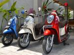 Scooter RENTAL - 5 USD (50 000 IDR) for one day. Driver lessons is not necessary