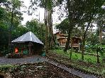 will be in Melvin's House, is an experience of life in the midst of the cloud forest