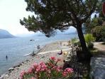 Het strandje...een heerlijke plek om te luieren, te lezen, te zonnen en te zwemmen.