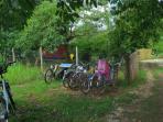 Vélos à disposition gratuitement