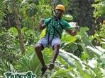 Zipline through the Rainforest!