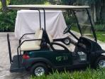 Golf cart included with rental.