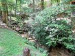 Creekside Comfort