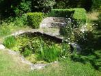Wildlife pond. Shallow but take care with very young children