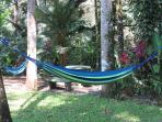 Garden, Hammocks, Jungle Creek