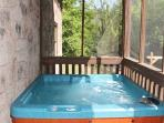 Screened In Hot Tub at Mountain Music