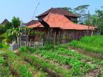 Organic farming community