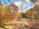 Fall Season View from Licklog Hollow
