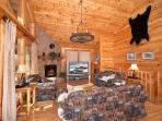 Living Room at Bear Country