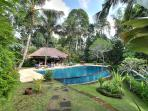 Villa Alamanda - Pool from boundary fence
