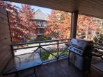 Balcony/BBQ