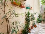 Internal Garden