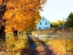 Fall is a beautiful time of year in our village - the air is crisp & the trees are beautiful