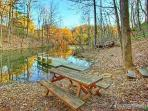 Picnic Area at Fishin' Hole