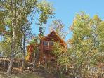 Low Rear Exterior View at Moonbeams & Cabin Dreams