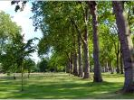 Relax in the beautiful surroundings and fresh air in Hyde Park.