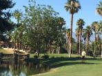 Indian Palms Golf Course