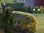 Part of the vast plush gardens