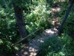 The forest trail leads from the house to the gazebo, pond and creek