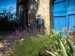 The property has lavender, roses and a herb garden which attract scores of butterflies in summer.