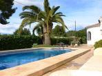 Cool refreshing pool