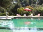 Extra Large Salt Water Pool