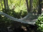 Hammock in the Aspens