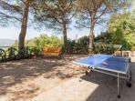 Outdoor Ping-Pong & Badminton