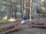2 Picnic Tables with Grill (free propane) and Fire Pit (free cut wood)