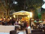 Collioure garden dining in historique locations