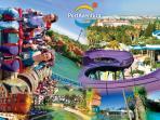 Parque temático PortAventura (30 minutos)