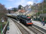 Pickering Steam Railway Station 2 miles away