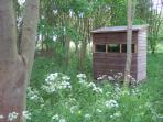 Wildlife hide where you can regularly spot badgers, bats and buzzards.